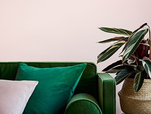 green sofa with potted plant