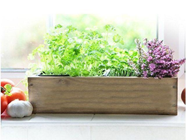 herb garden on a kitchen windowsill by craftsmen ltd on etsy