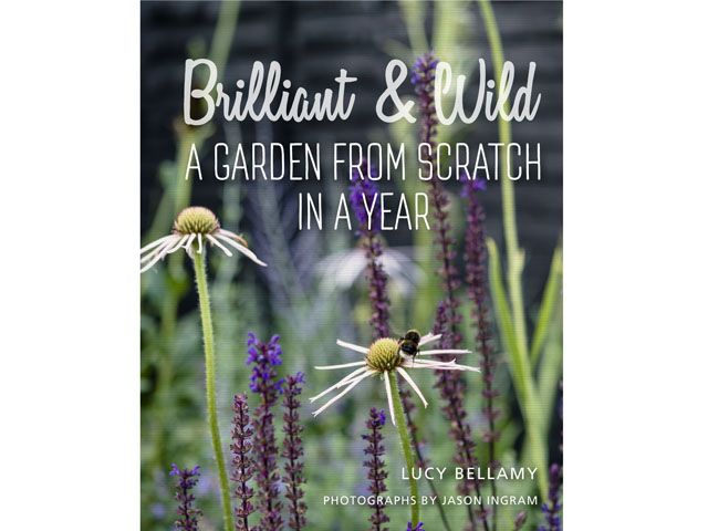 brilliant and wild garden from scratch in a year book by lucy bellamy, new interior design books to fire your creativity