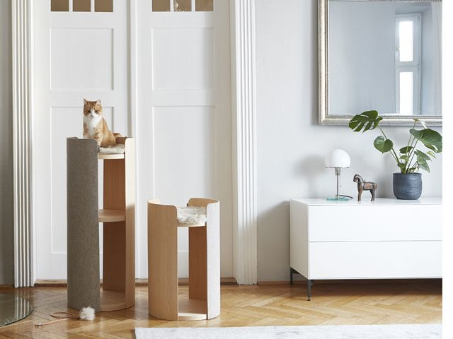cat on top of cat tree in living room from stylish pet accessory brand Miacara