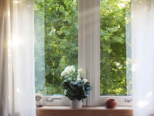 house plant on window sill - how to keep plants alive while on holiday - goodhomesmagazine.com