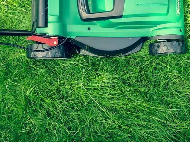lawn mower on grass - how to keep plants alive while on holiday - goodhomesmagazine.com