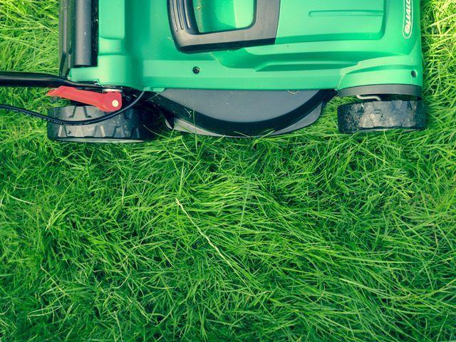 Lawnmower mowing grass: Credit: Daniel Watson