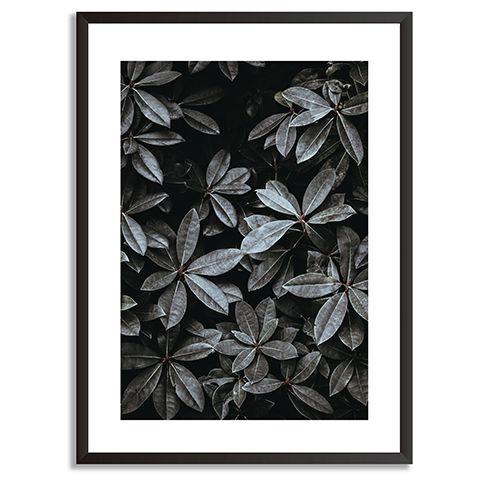 black themed print in frame - black colour palette: our top picks - inspiration - goodhomesmagazine.com