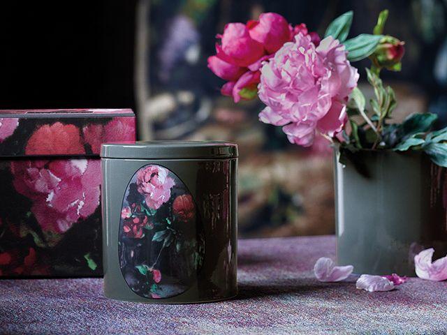 Jo malone x Martyn thompson - rose image