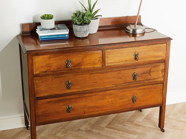 vintage chest of drawers with plants - aldi launches range of upcycling tools - news - goodhomesmagazine.com