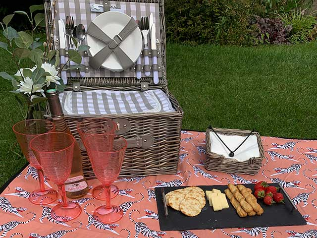 Tiger patterned pink picnic blanket with hamper and tray of snacks on grassy field